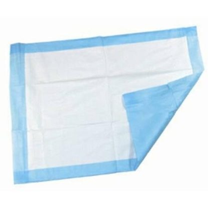 "Underpads, Incontinence, 17"" x 24"", Blue, 50/package"